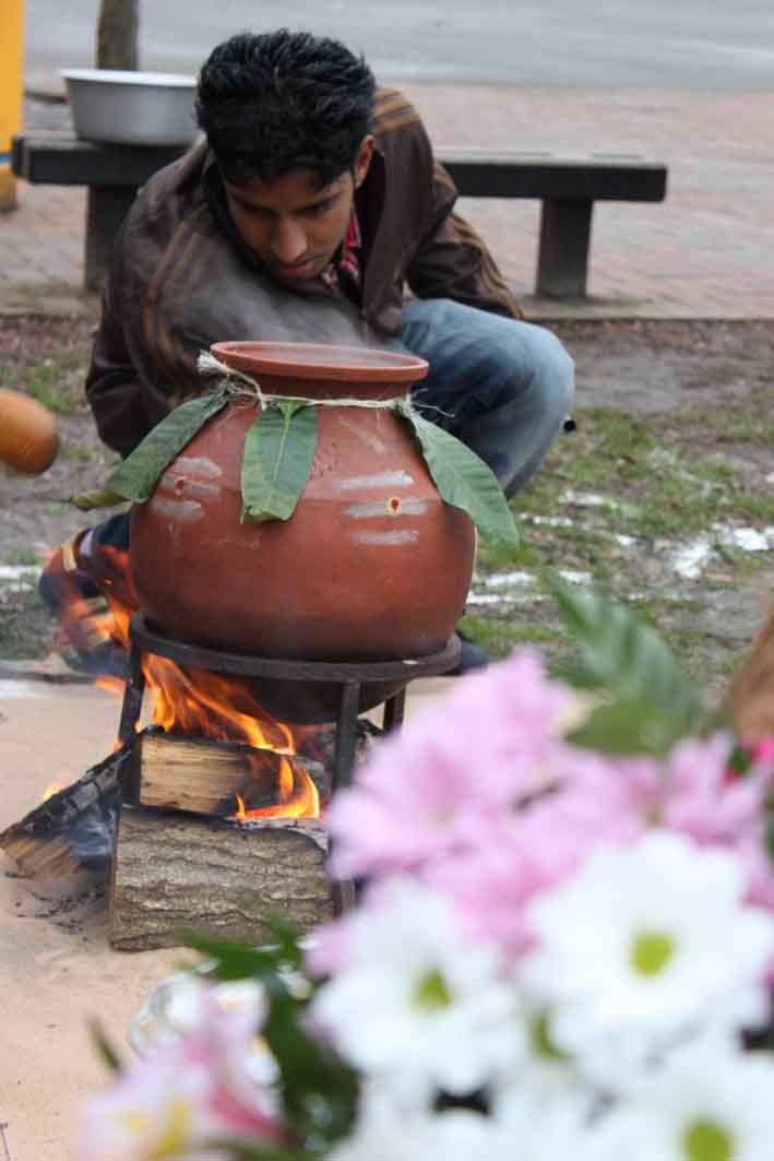 An Essay on Pongal Festival for Kids, Children and Students