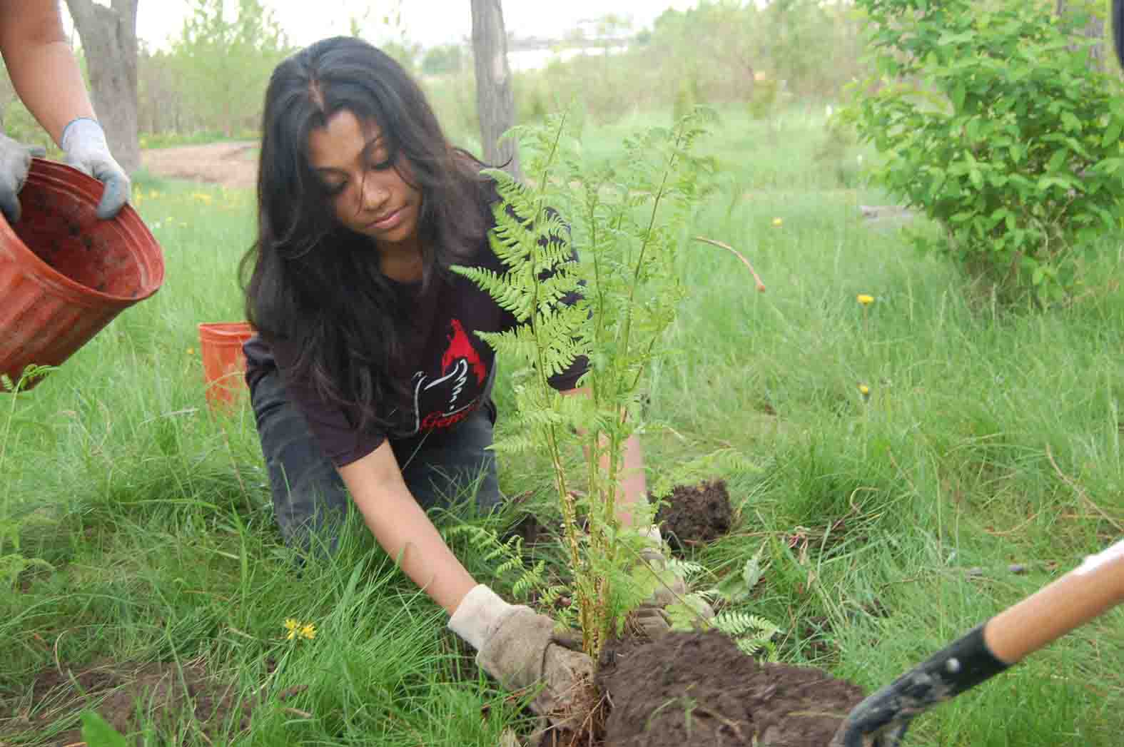 New trees living memorial to genocide victims   Tamil Guardian